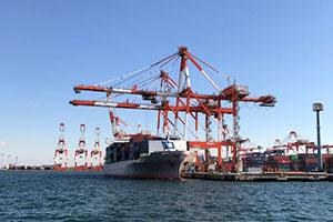 株式会社LIFは適正価格で輸出入・貿易・通関に関する業務をご提案することができます。